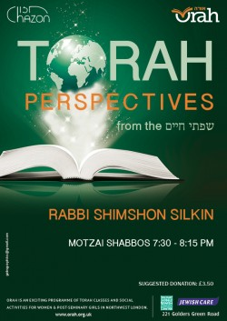 Torah perspectives series 2 whatsapp and web